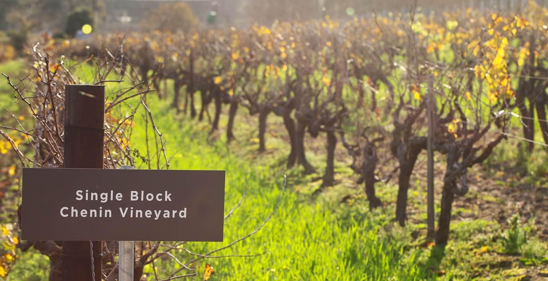 single-block-banner